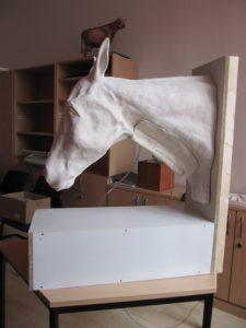 der Prototyp des Models zur Venenpunktion am Pferd copyright: J.Eichel